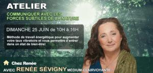 ATELIER : Communiquer avec les forces subtiles de la nature @ CHEZ RENÉE | Montréal | Québec | Canada